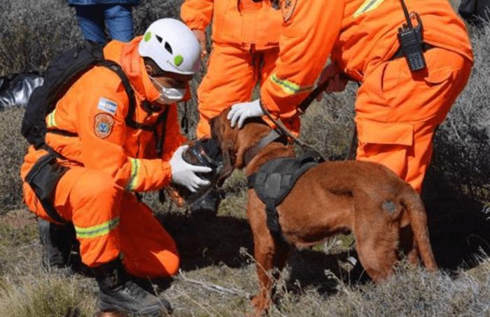 Caso Maldonado: El rol clave de los bomberos voluntarios